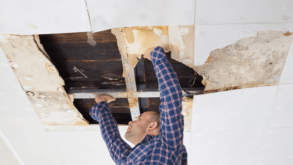What you need to know about home Water Damage